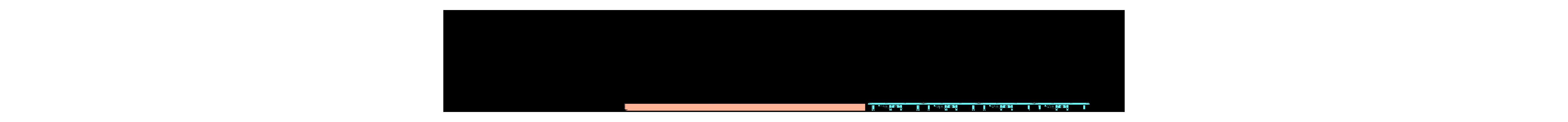 Processo di uscita ondulatore